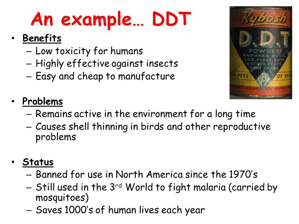 An example… DDT Benefits – Low toxicity for humans – Highly effective against insects – Easy and cheap to manufacture Problems – Remains active in the environment for a long time – Causes shell thinning in birds and other reproductive problems Status – Banned for use in North America since the 1970's – Still used in the 3 rd World to fight malaria (carried by mosquitoes) – Saves 1000's of human lives each year