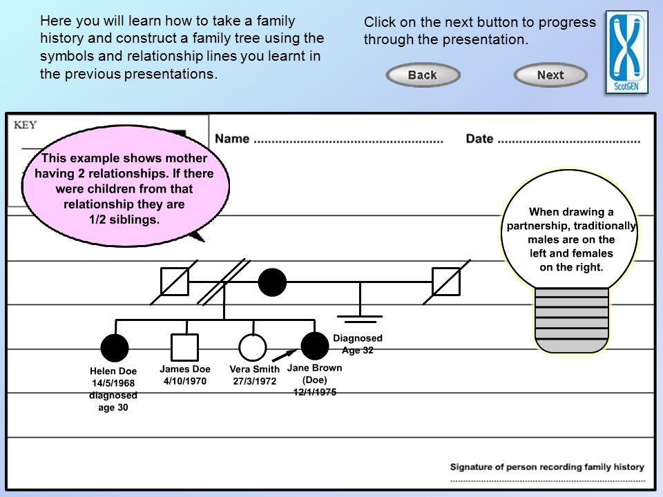 Help With Constructing A Family Tree Pedigree Here You Will Learn