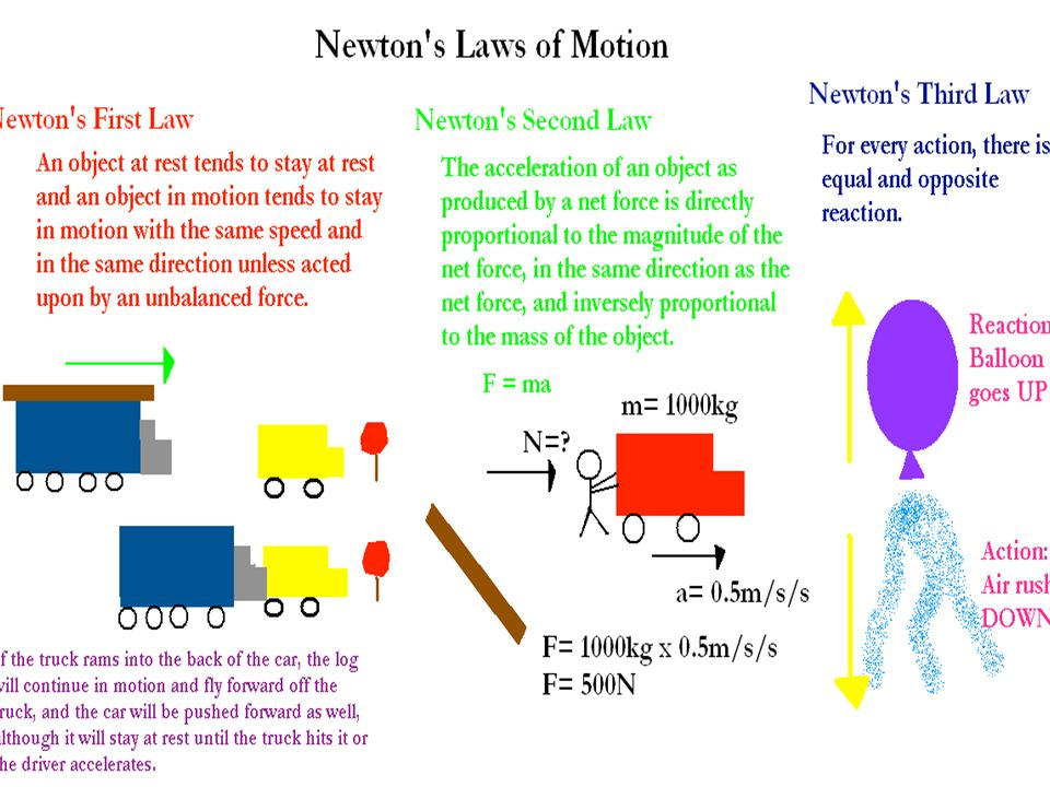 Isaac Newton By Felipe Azevedo Summary Of Qualifications Invented