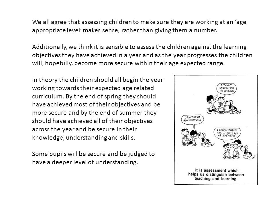 We all agree that assessing children to make sure they are working at an 'age appropriate level' makes sense, rather than giving them a number.