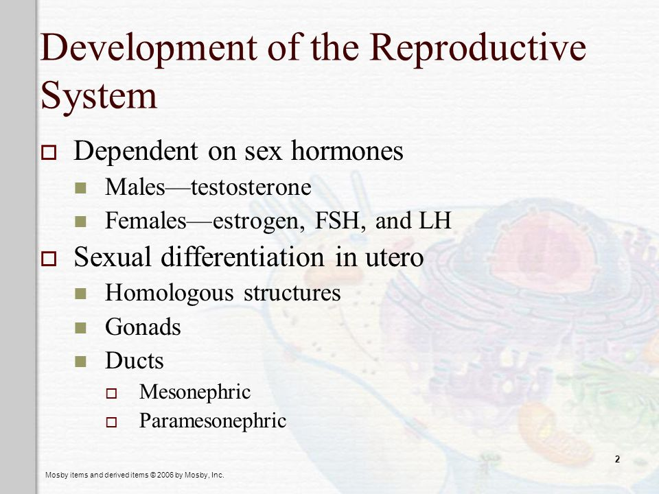 ch 25 the reproductive systems and 33) the male reproductive system is most closely associated with which of the following systems 50) where in the male reproductive system would you expect to find the most mature spermatozoa.