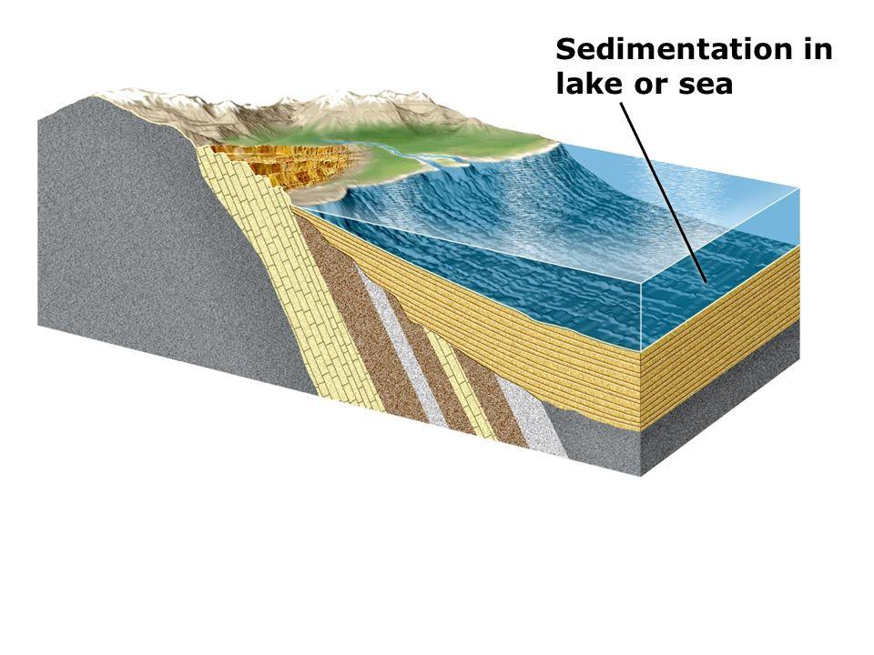 sedimentary dating relative dating activity worksheet answer key