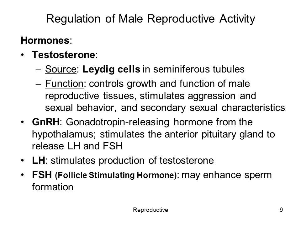 Reproductive1 Reproductive System Rev 5 11 The Term Genitalia Refers