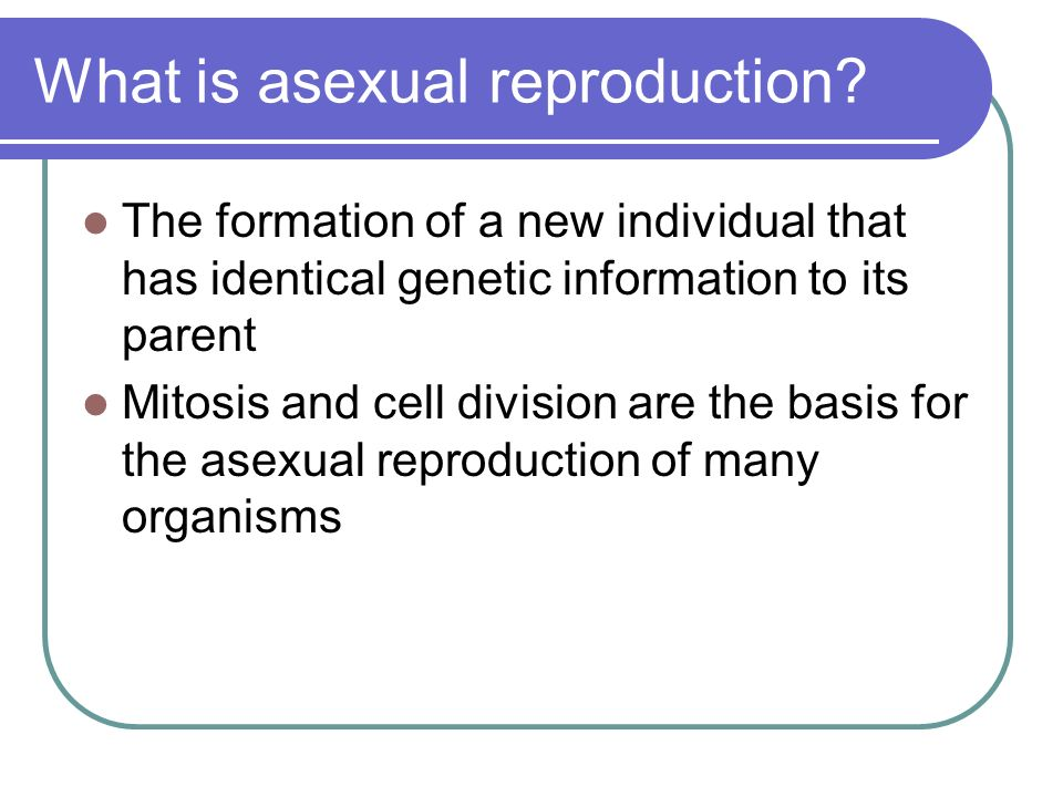 Describe fragmentation in asexual reproduction how many parents