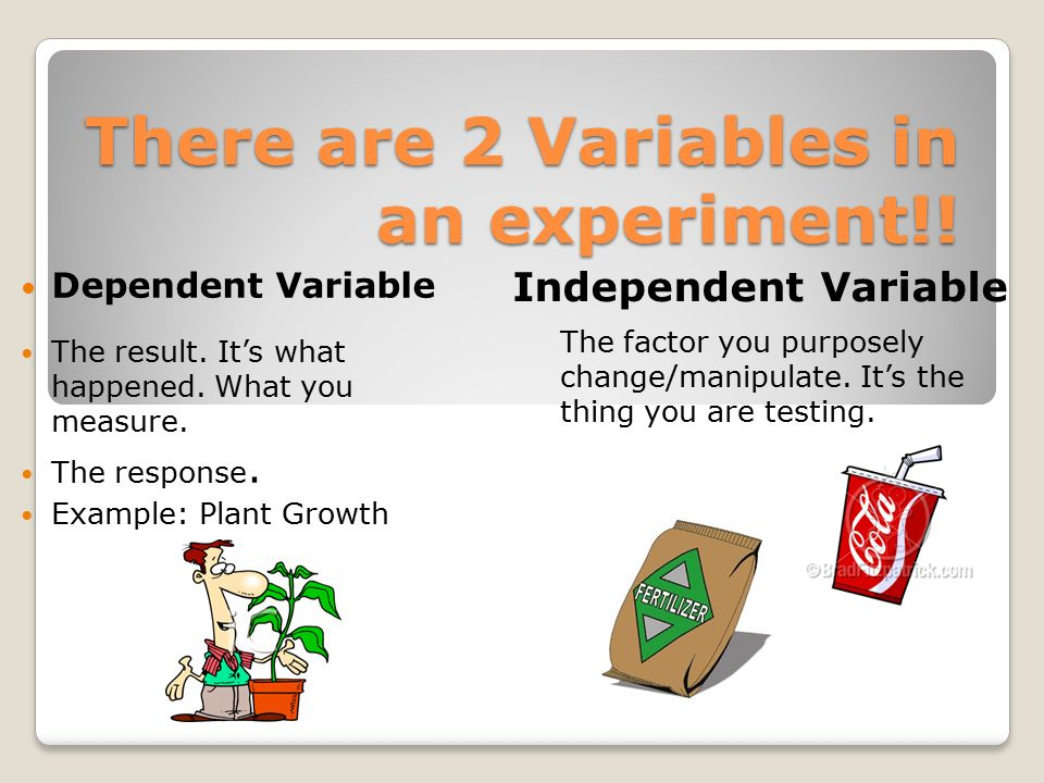 In every experiment, we change 1 thing, this is called a variable.