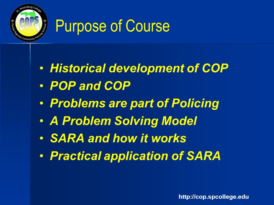 sara problem solving