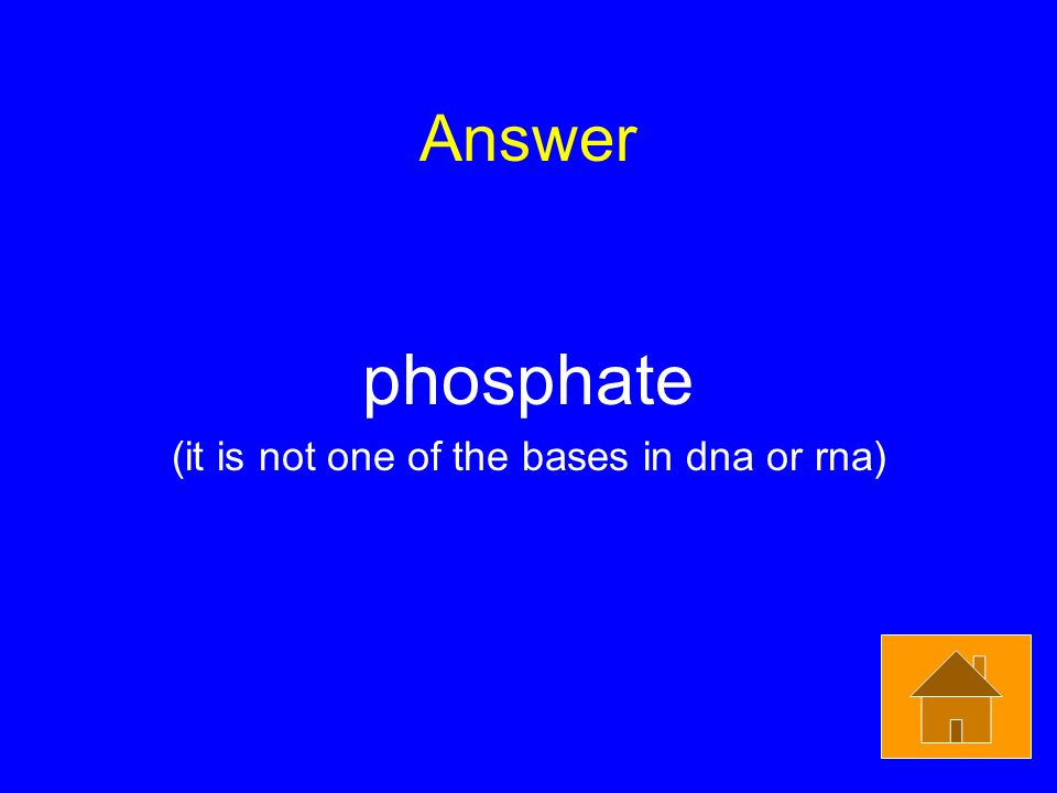 Answer phosphate (it is not one of the bases in dna or rna)