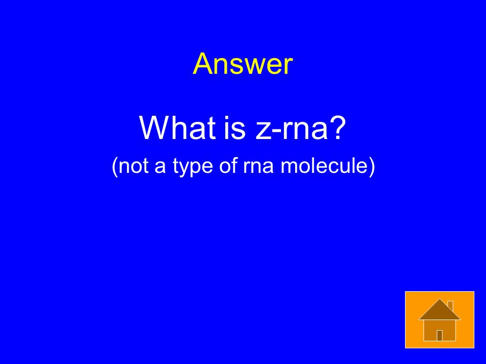 Answer What is z-rna (not a type of rna molecule)