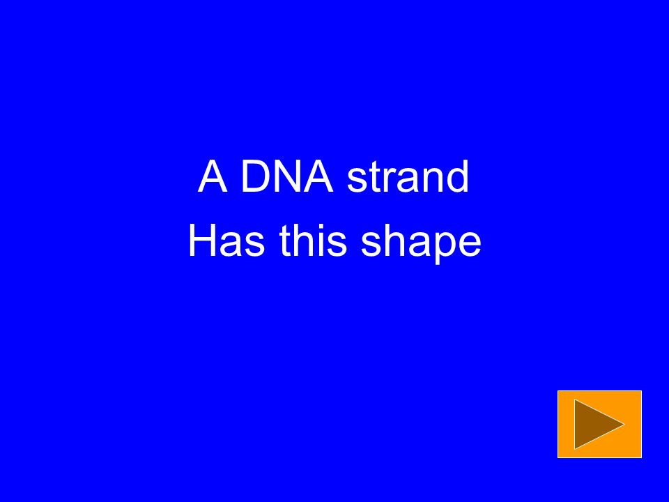 A DNA strand Has this shape