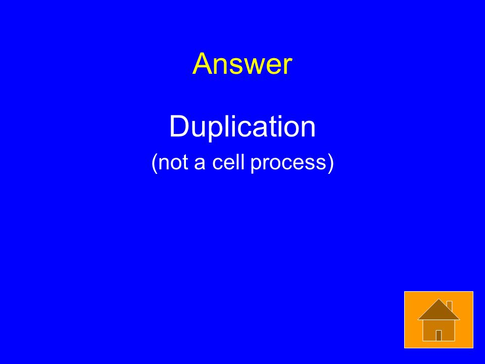 Answer Duplication (not a cell process)