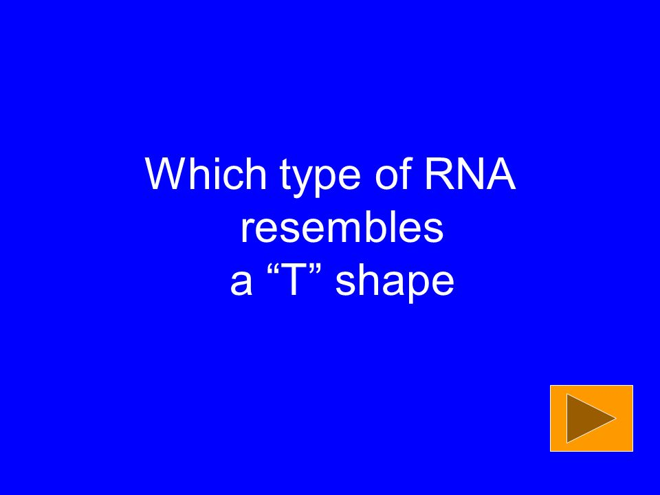 Which type of RNA resembles a T shape