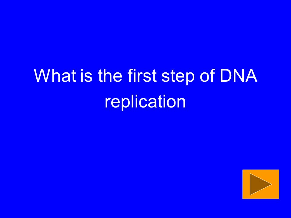 What is the first step of DNA replication
