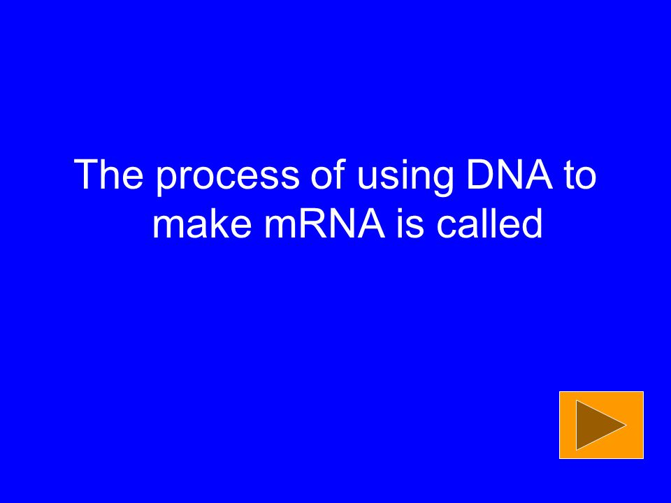 The process of using DNA to make mRNA is called