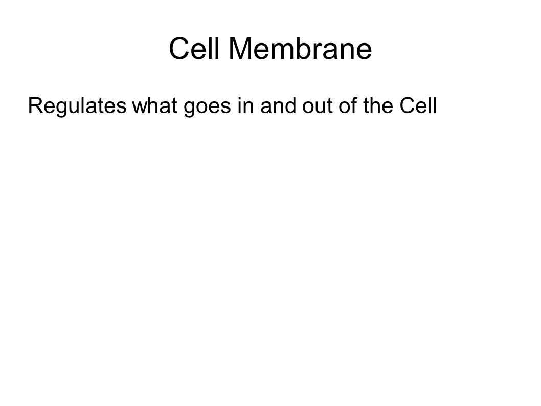 Cell Membrane Regulates what goes in and out of the Cell