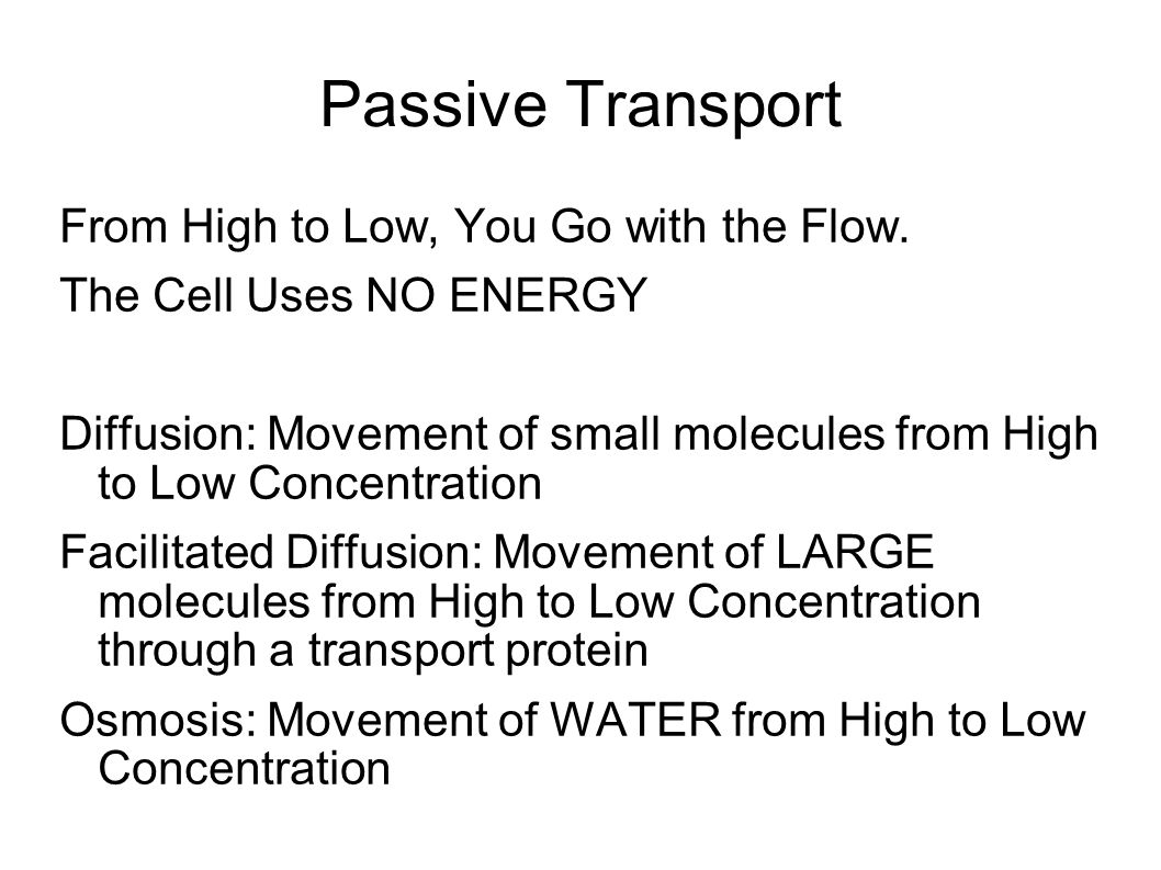 Passive Transport From High to Low, You Go with the Flow.