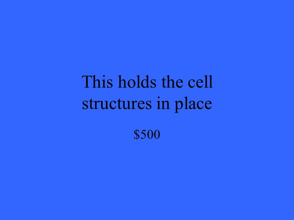 This holds the cell structures in place $500