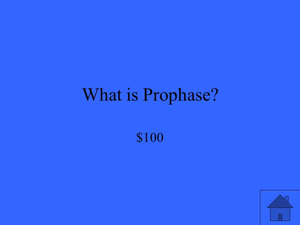 What is Prophase $100
