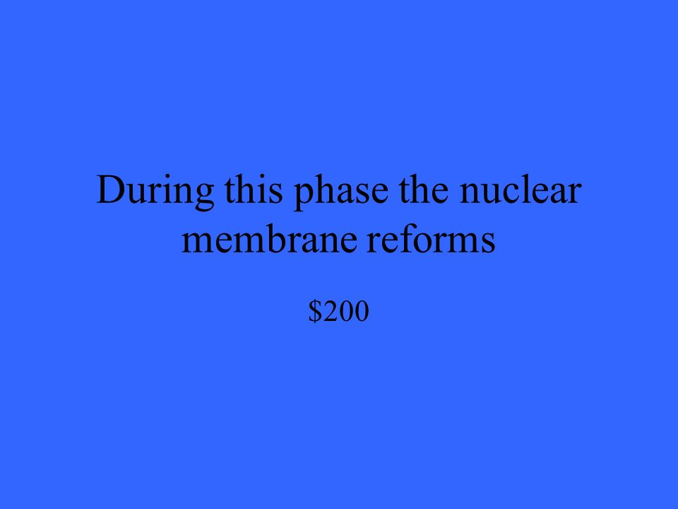 During this phase the nuclear membrane reforms $200