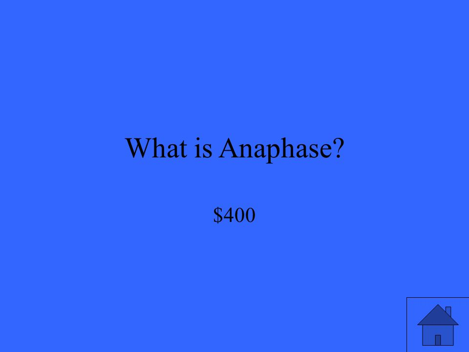 What is Anaphase $400