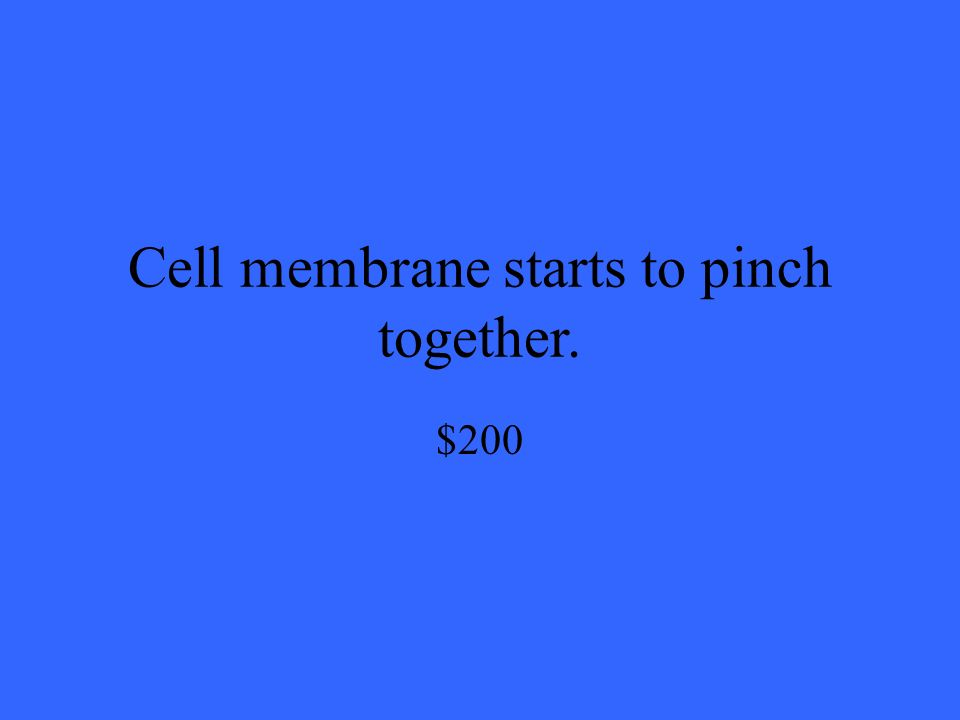 Cell membrane starts to pinch together. $200