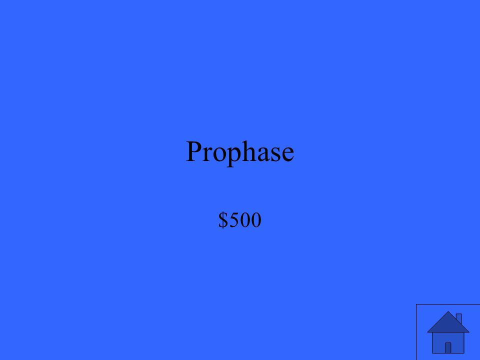 Prophase $500