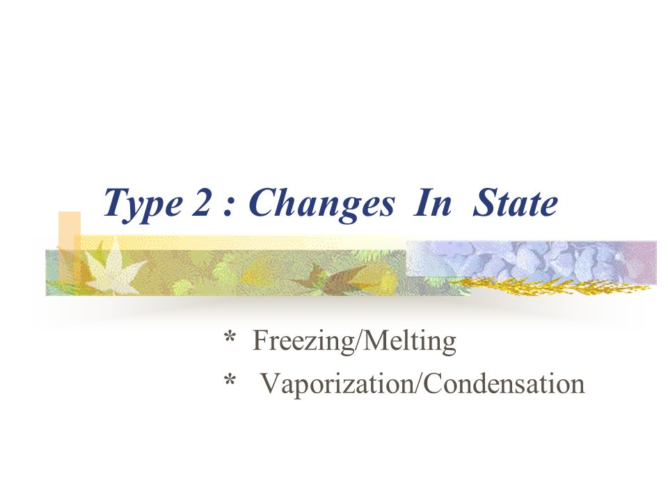 Type 2 : Changes In State * Freezing/Melting * Vaporization/Condensation