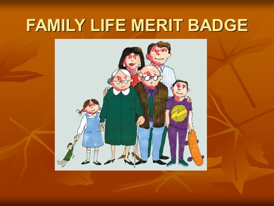 FAMILY LIFE MERIT BADGE  #1 What is a family? People