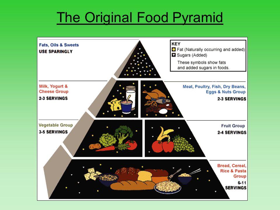 ocean food pyramid - 960×720