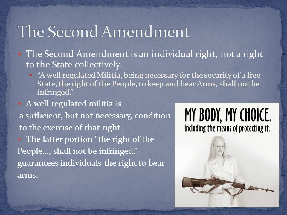 a well regulated militia book