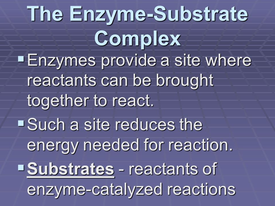 The Enzyme-Substrate Complex  Enzymes provide a site where reactants can be brought together to react.