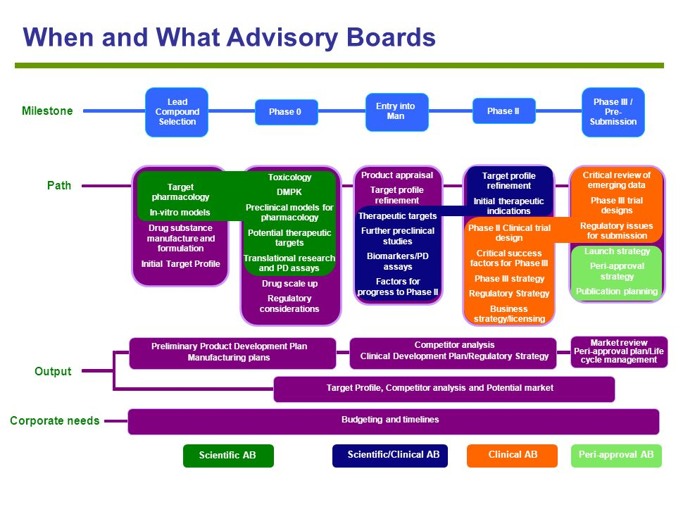 The Use of Scientific Advisory Boards An Invaluable Tool in