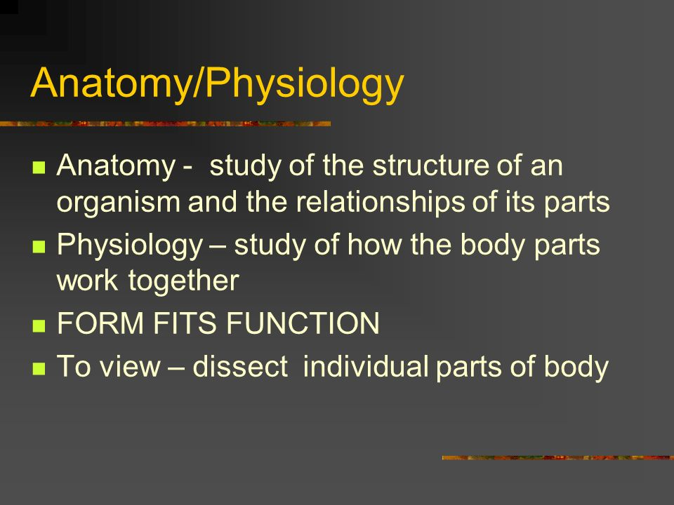 Introduction To The Body Human Anatomy Physiology Dr Smith Ppt