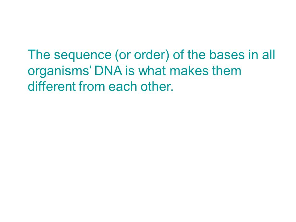 The sequence (or order) of the bases in all organisms' DNA is what makes them different from each other.