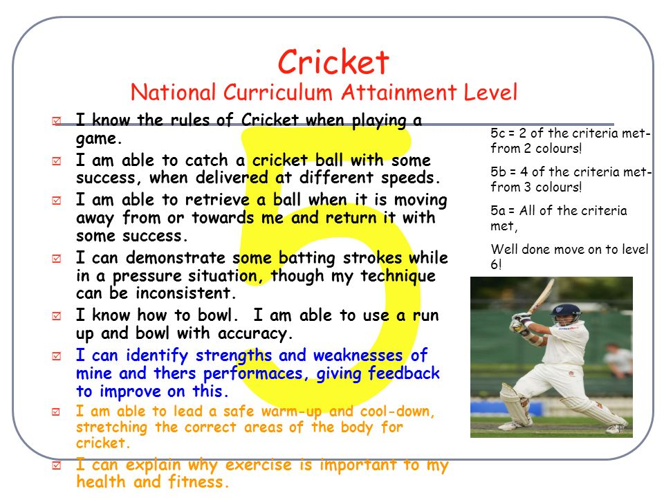 3 Cricket I Know Some Of The Basic Rules Of Cricket I