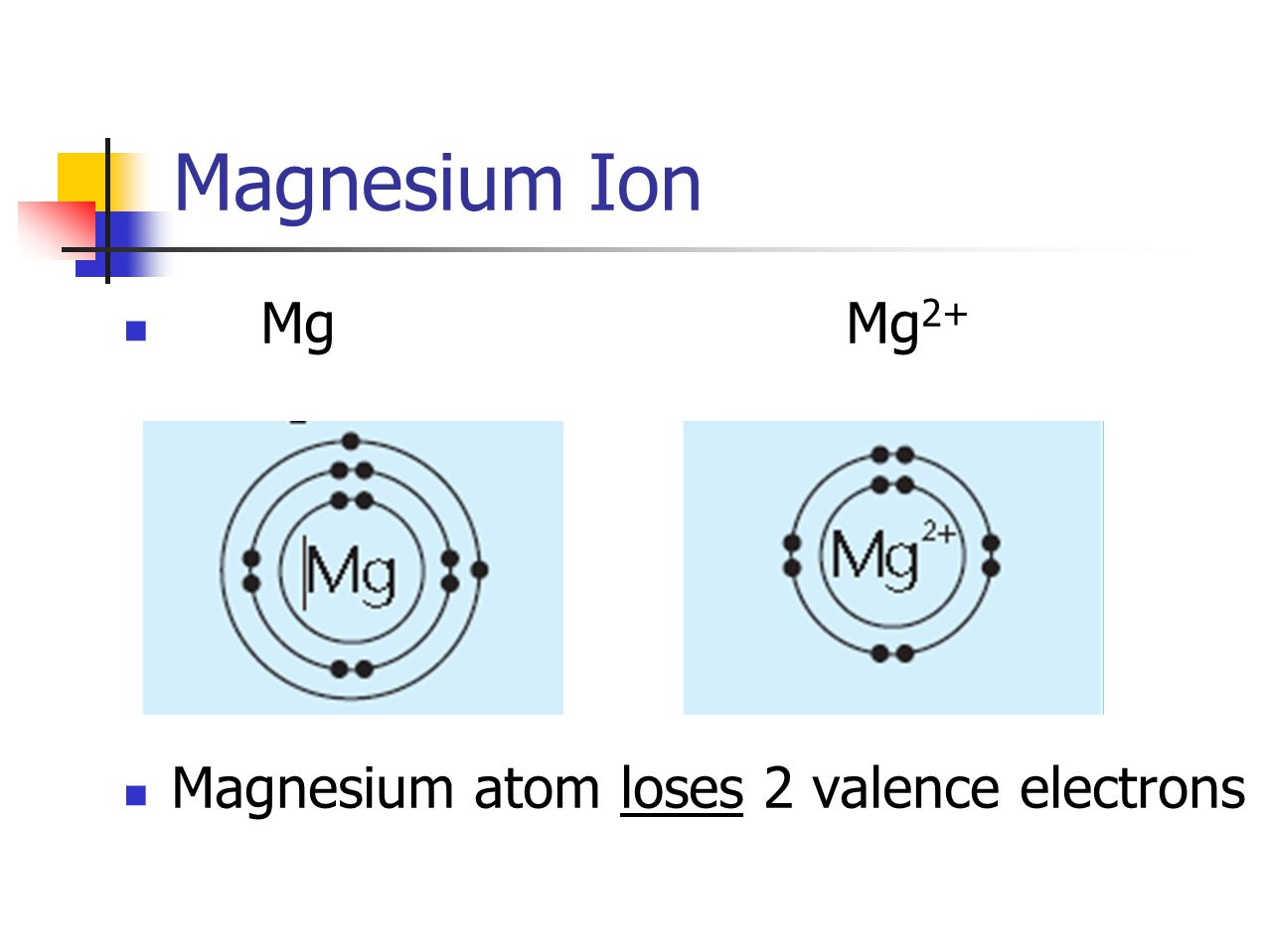Magnesium Ion Mg Mg 2+ Magnesium atom loses 2 valence electrons