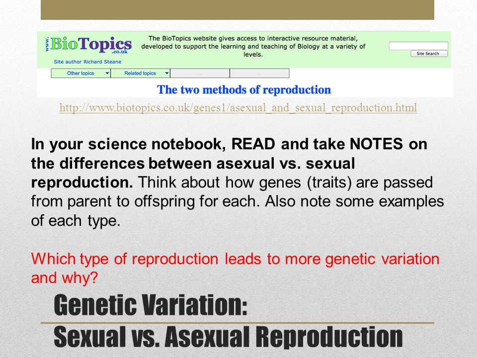 Biotopics asexual reproduction
