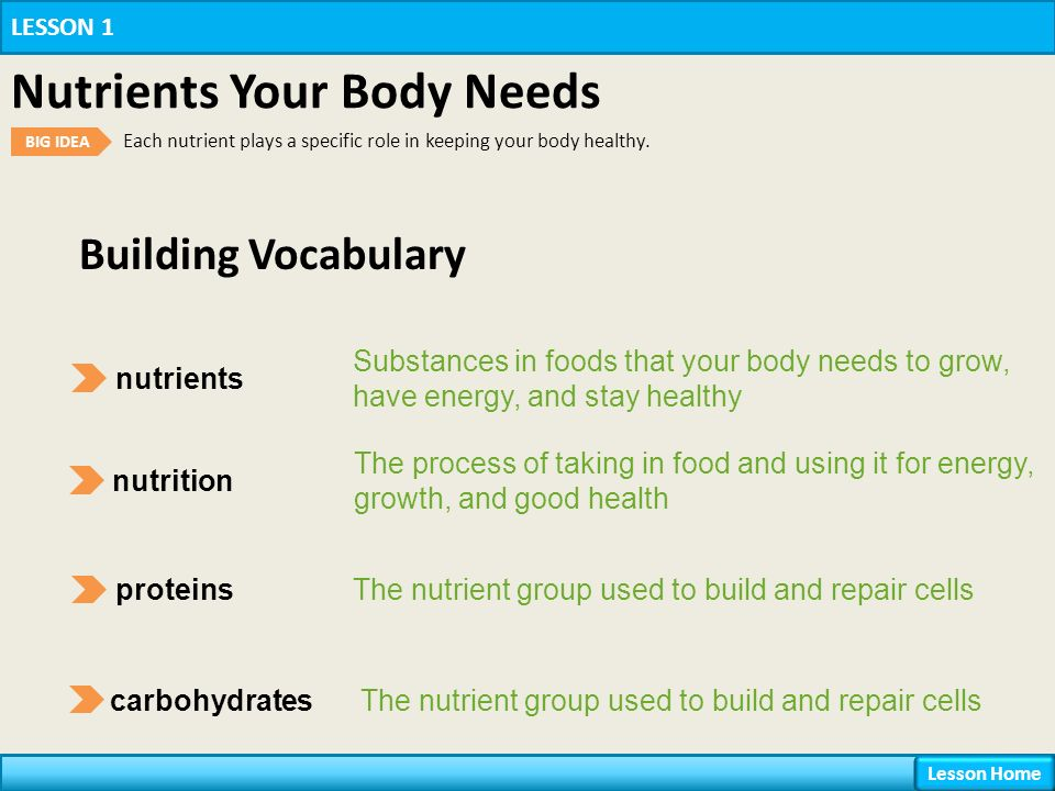 Chapter 9 Nutrition Lesson 1 Nutrients Your Body Needs Ppt Download