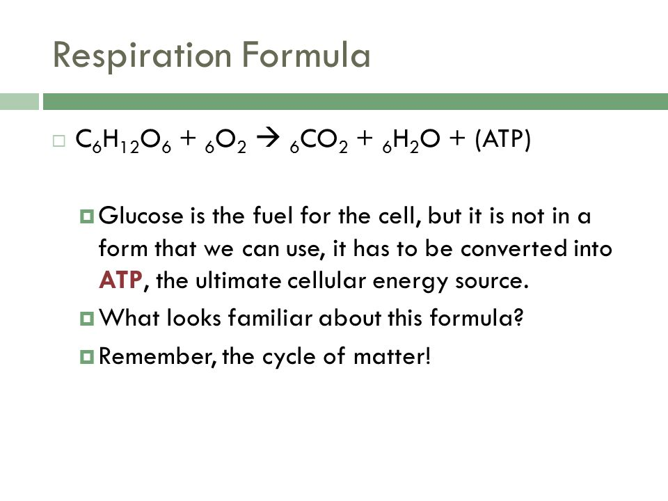 Respiration Formula  C 6 H 12 O O 2  6 CO H 2 O + (ATP)  Glucose is the fuel for the cell, but it is not in a form that we can use, it has to be converted into ATP, the ultimate cellular energy source.