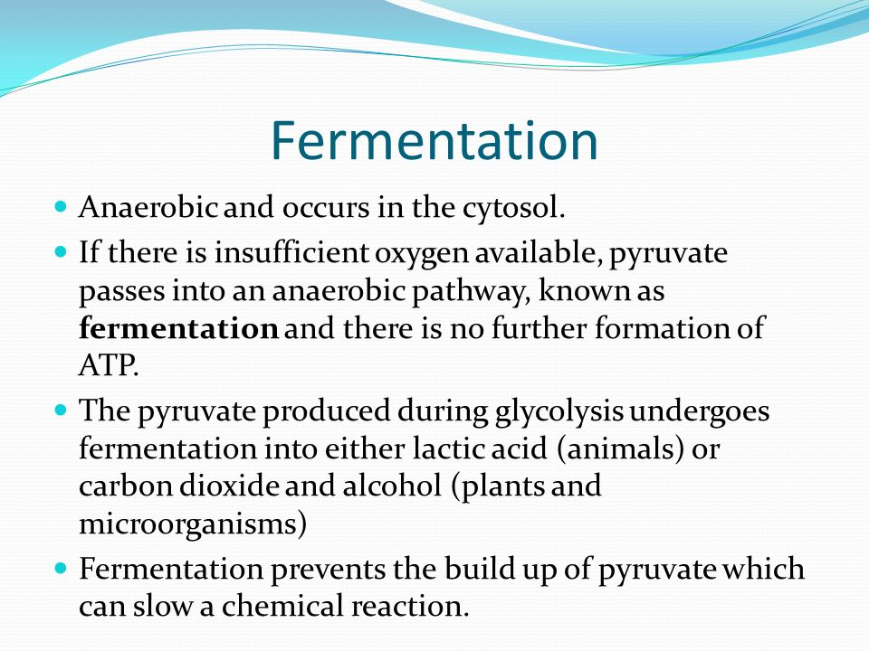 Fermentation Anaerobic and occurs in the cytosol.