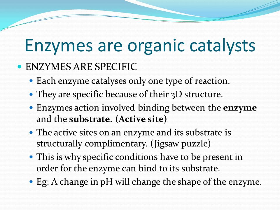 Enzymes are organic catalysts ENZYMES ARE SPECIFIC Each enzyme catalyses only one type of reaction.