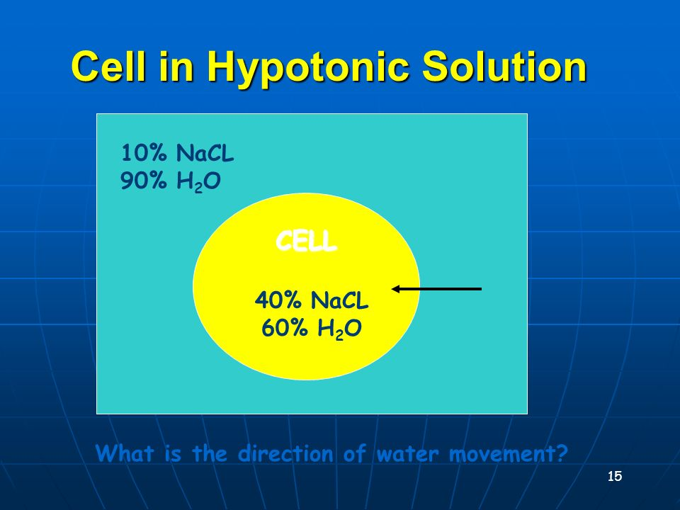 14 Cell in Isotonic Solution CELL 10% NaCL 90% H 2 O 10% NaCL 90% H 2 O What is the direction of water movement.