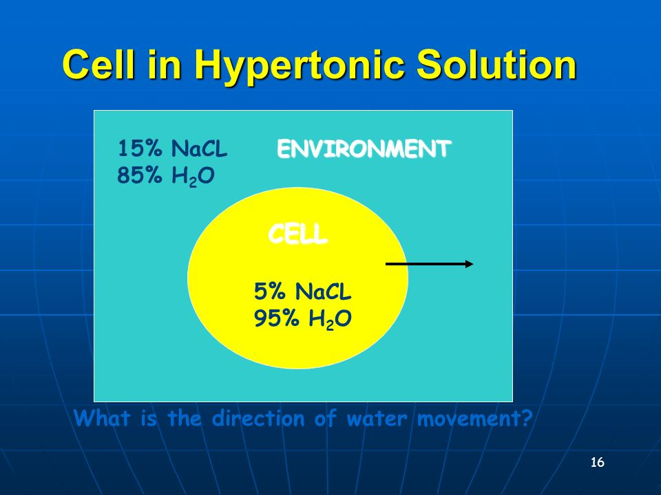 15 Cell in Hypotonic Solution CELL 10% NaCL 90% H 2 O 40% NaCL 60% H 2 O What is the direction of water movement