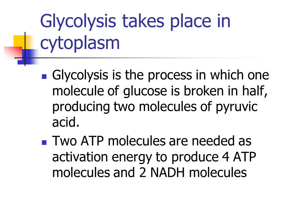 Glycolysis takes place in cytoplasm Glycolysis is the process in which one molecule of glucose is broken in half, producing two molecules of pyruvic acid.
