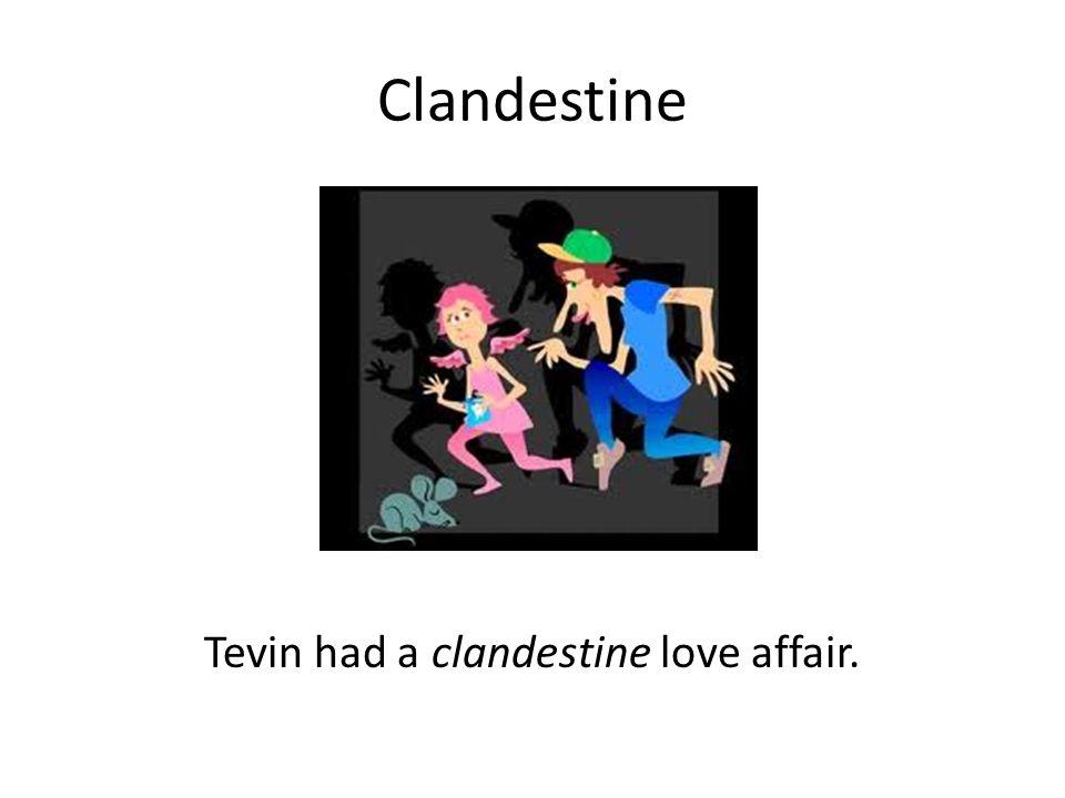 Definition of clandestine affair