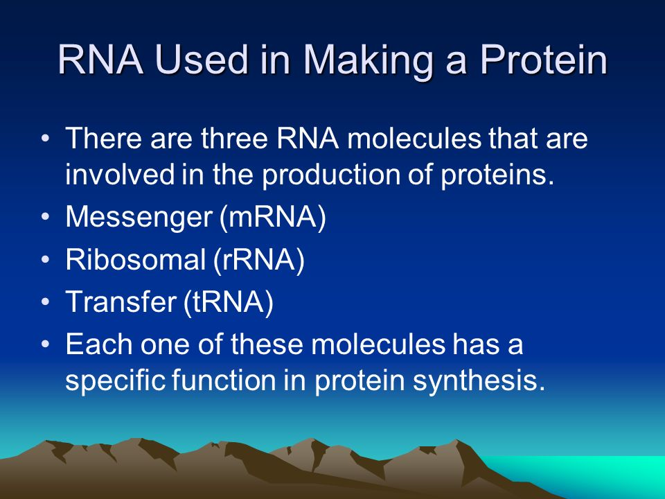RNA Used in Making a Protein There are three RNA molecules that are involved in the production of proteins.