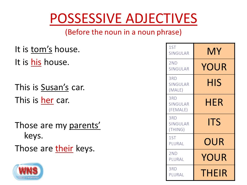 POSSESSIVE ADJECTIVES (Before the noun in a noun phrase) It is tom's house.