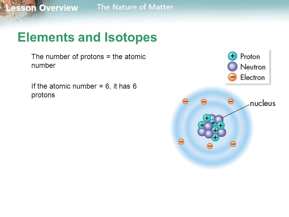 Lesson Overview Lesson Overview The Nature of Matter Elements and Isotopes The number of protons = the atomic number If the atomic number = 6, it has 6 protons