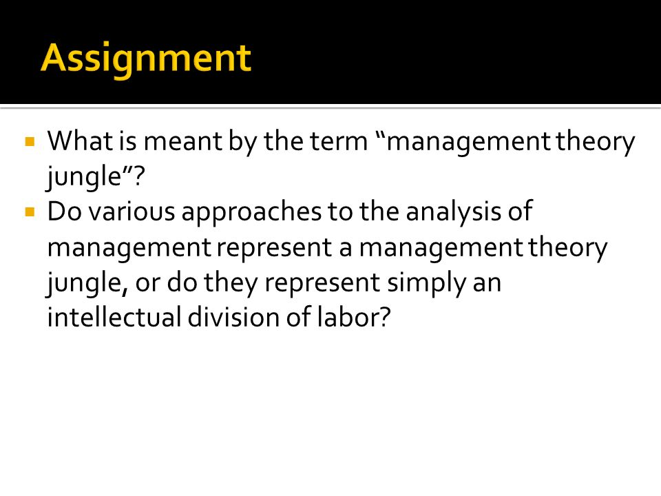 management theory jungle