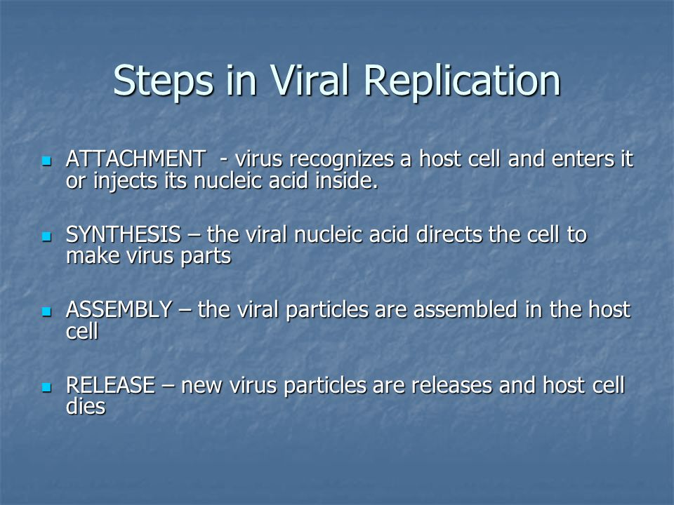 Steps in Viral Replication ATTACHMENT - virus recognizes a host cell and enters it or injects its nucleic acid inside.