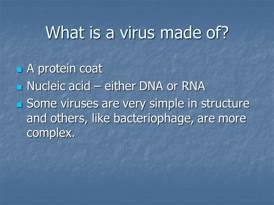 What is a virus made of.